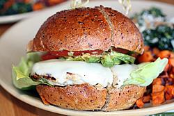 True Food Kitchen - Newport Beach California