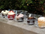 Flirty Cupcakes - Chicago Illinois